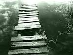 Treppen, Wasser, PTBS